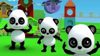 Bao แพนด้า | หัวเข่าไหล่ | เพลงเด็ก | Baby Bao Panda | 3D Kids Rhymes | Head Shoulder Knees and Toes