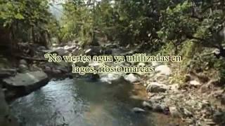 Documental Ecologia de la Sierra Norte de Oaxaca Santa Maria Tepantlali Mixe Parte 1 IEBO