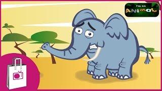 im an elephant