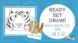 Ready Set Draw! How to draw Big Cats from I AM A CAT