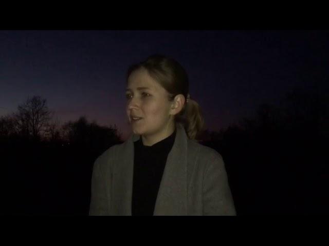 Изображение предпросмотра прочтения – ЮлияТиунова читает произведение «О, слезы на глазах!...» М.И.Цветаевой