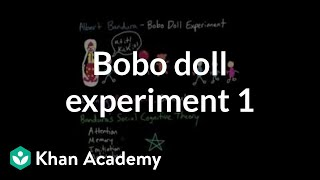 Observational learning: Bobo doll experiment and social cognitive theory | MCAT | Khan Academy