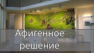 Неожиданное в решении дизайна интерьера Из Новосибирска с любовью(Неожиданное и интересное ноу хау интерьера для закрытых помещений предложили дизайнеры из Новосибирска...., 2016-03-18T09:00:01.000Z)