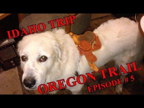 The Frank Files:  IDAHO TRIP Episode #5