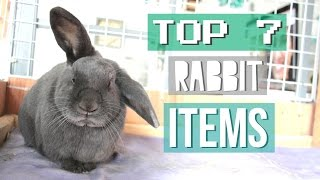 Top 7 Rabbit Items