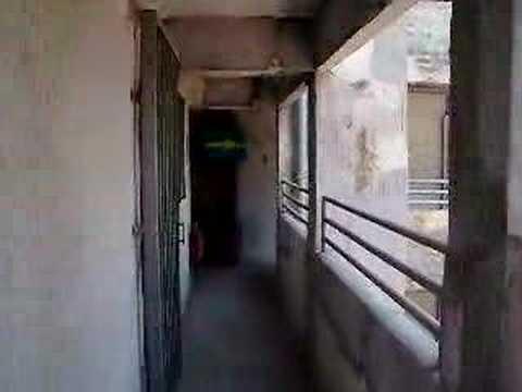 Shek Kip Mei Estate (2)