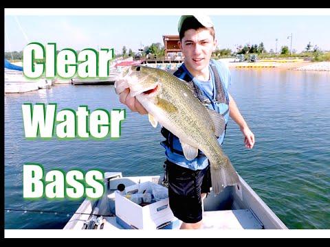 Bass fishing shallow docks youtube for Bass fishing youtube