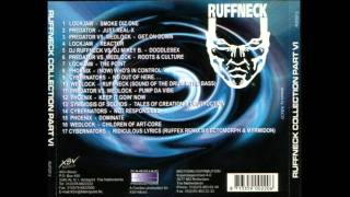 Ruffneck Cybernators Ridiculors Lyrics.wmv