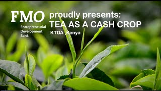 Kenya Tea Development Agency