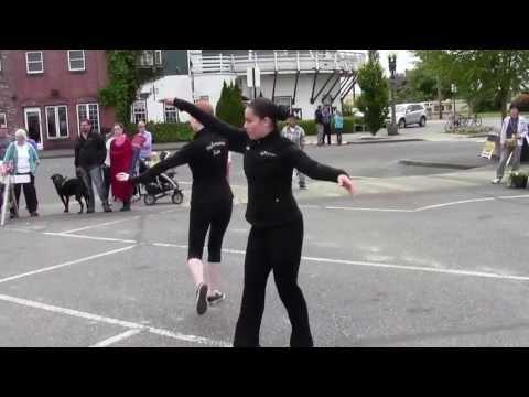 Japanese Crane Dance