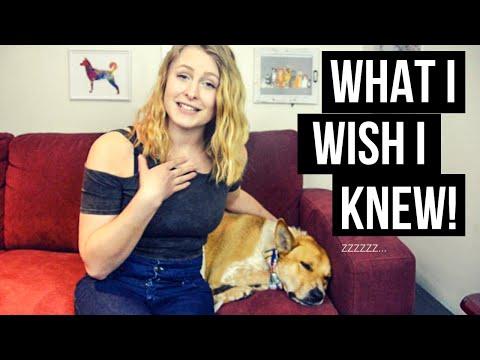 5 THINGS I WISH I KNEW BEFORE ADOPTING A DOG