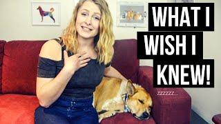5 THINGS I WISH I KNEW BEFORE ADOPTING A DOG | InRuffCompany.com