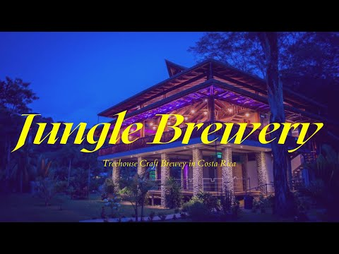 Treehouse Craft Brewery In The Jungle Of Costa Rica