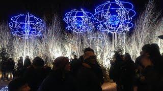 #tbt: New Year in Paris / Новый год в Париже(Среди горы разных видео внезапно нашла несколько коротких кусочков новогоднего Парижа. Это видео - подарок..., 2015-03-14T17:34:25.000Z)