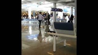 Ryanair - Fight in Mallorca airport.