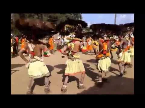 Must watch Gonds Traditional Gussadi Dance. Gussadi Nruthyam