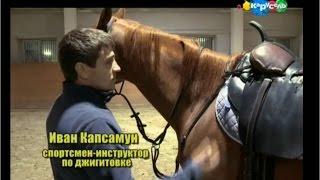 Быстрее, выше, сильнее вместе с Тигренком Муром и... в Кремлевской школе верховой езды 2