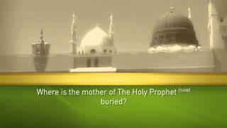 Holy Prophet (SAW) Quiz  17