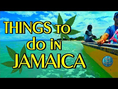 JAMAICA Vacation | Negril Excursions Vlog | Things to do in JAMAICA !!!
