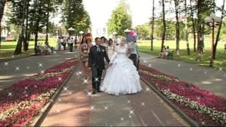 Свадебная прогулка Евгения и Юлии в Молодечно