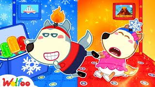 Wolfoo and Hot vs Cold Room Challenge with Lucy - Wolfoo Kids Stories | Wolfoo Channel