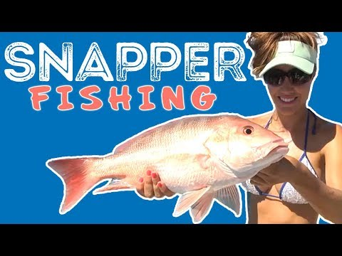 Fishing For Red Snapper with Luiza | SALT LIFE