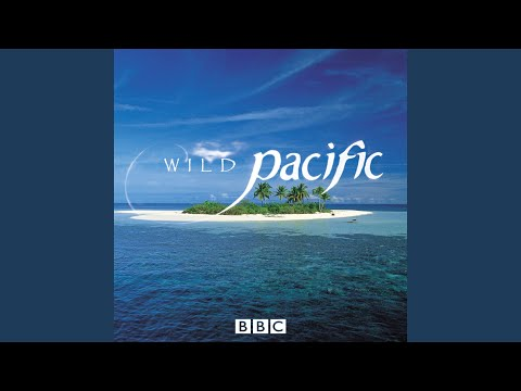 Somewhere Over The Rainbow (Wild Pacific Opening Title Music)
