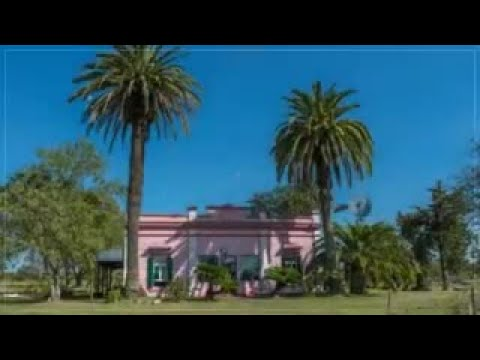 Gorgeous estate for sale in Argentina