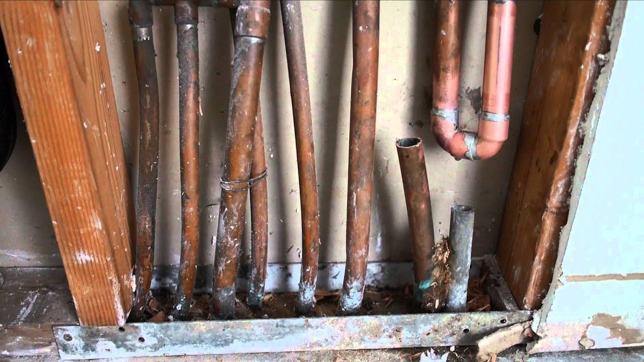 Water Leak Underneath Hardwood Floor Mold Nightmare