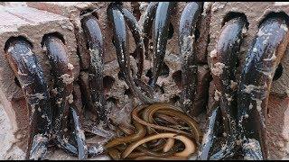 Creative Deep Hole Brick Eel Trap Amazing Boys Catch Eel With 8 Brick Hole Eel Trap