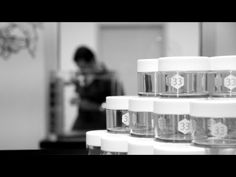 Dispensary 33 | Patient Focus and Quality Product