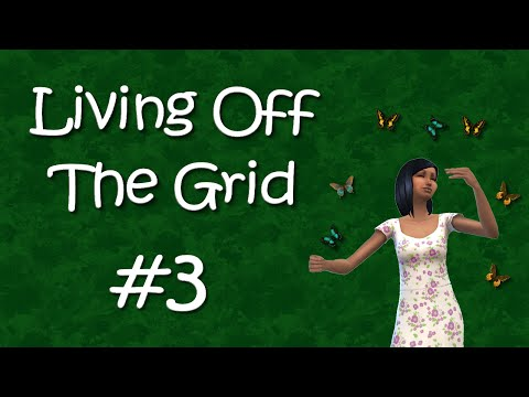 Living Off the Grid #3 - When life DOESN'T give you lemons...