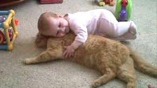 Милые дети любят своих кошек и собак. Сборник - [NEW HD]