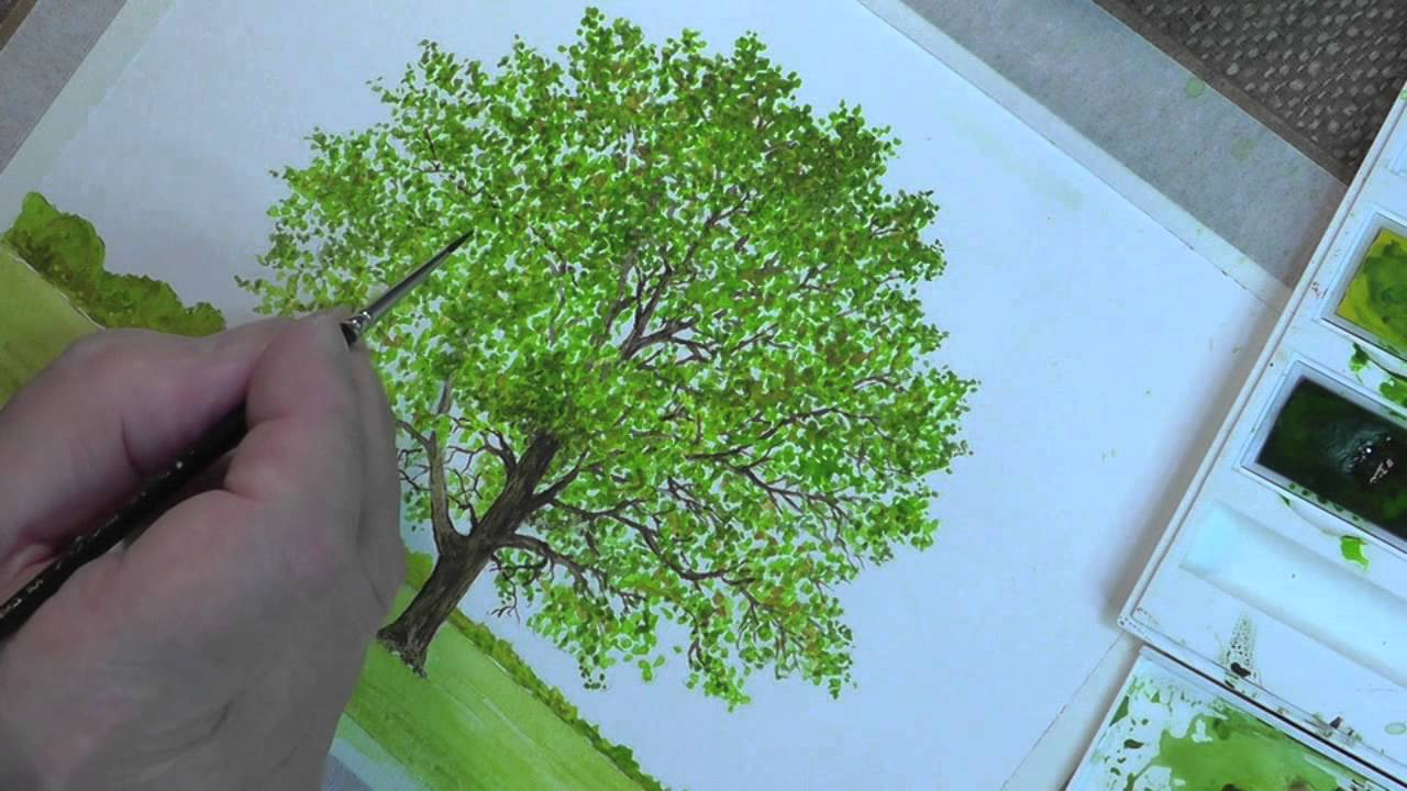 Draw Trees in Watercolour Trailer - YouTube for Tree Drawing With Watercolor  56bof