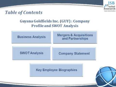 lallemand inc company profile swot and