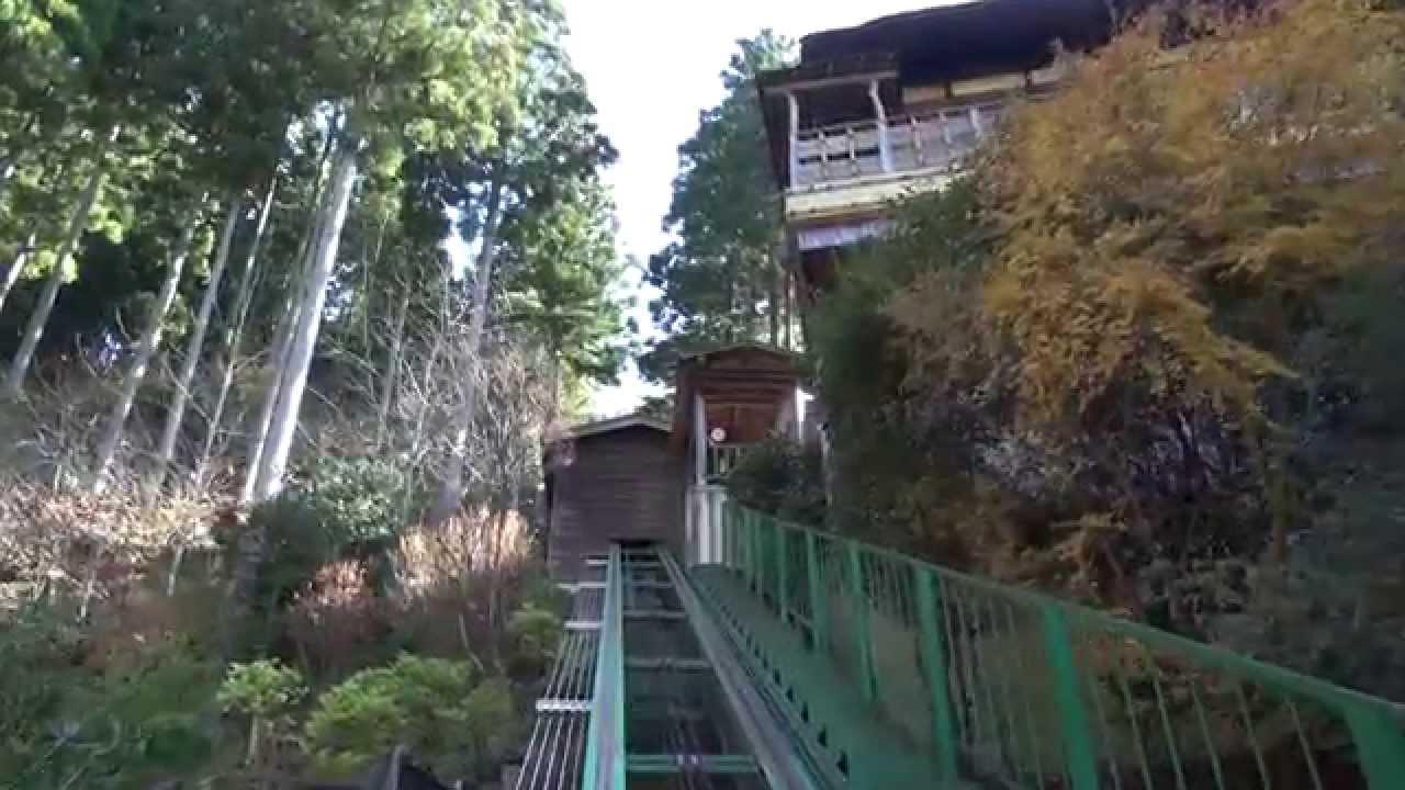 祖谷 ホテル 橋 温泉 新 かずら