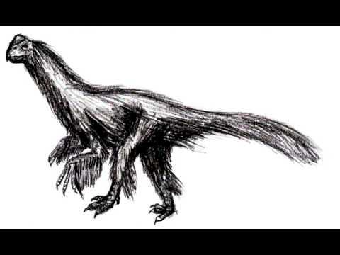 birdlike dinosaurs tribute - 20 subscribers special!