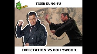 Video Tiger Kung-Fu: Expectation Vs Bollywood (Mithun's Worst Fight Scene Ever) download MP3, 3GP, MP4, WEBM, AVI, FLV September 2018