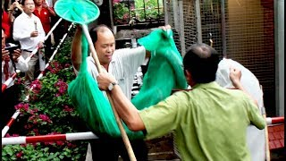 Vietnam released 2 large snakes to the forest
