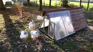 Poulailler mobile avec filet électrique - Poulailler ARAO
