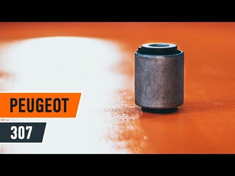 Cómo cambiar los bujes de los brazos oscilantes delanteros en PEUGEOT 307 INSTRUCCIÓN