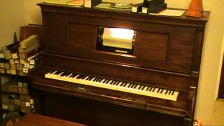 Frisky Fingers (Tom Brier) player piano roll
