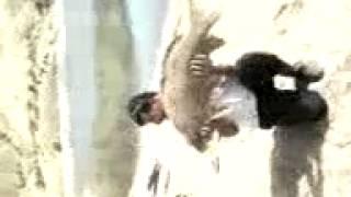 malatya sazan avı 15 kg pullu sazan
