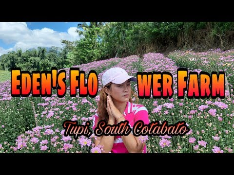 Eden's Flower Farm- Tupi South Cotabato