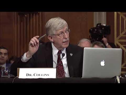Senator Warren asks NIH Director about Increasing Funding for Biomedical Research