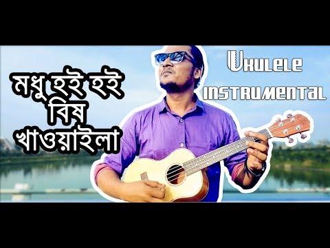 Modhu Hoi Hoi Bish Khaoila | মধু হৈ হৈ বিষ খাওয়াইলা | Ukulele Instrumental