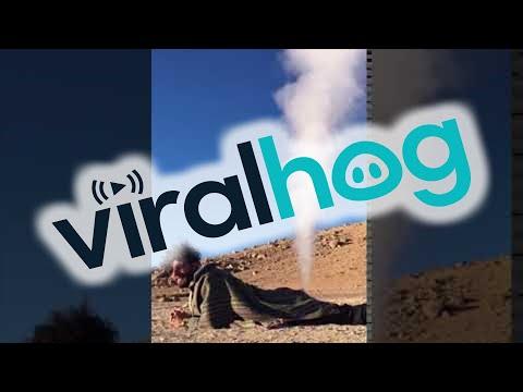 Thar She Blows! || ViralHog