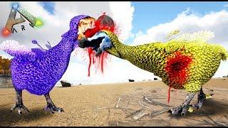 DODOS GLADIADORES!! XD EL MERCADO ILEGAL! - ARK MAPACHES DEL CARIBE #23 - NexxuzWorld