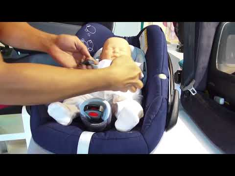 Installing a child safety seat with a seatbelt - GN Guides