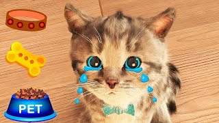 Little Kitten Adventure  My Favorite Cat Play with cute little kitten Educational game for kids